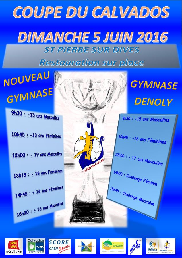 AFFICHE COUPE 2016